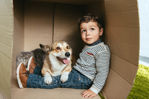 Caring for Pets During a Move